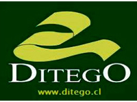 Ditego